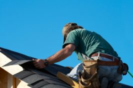 Roofer Professional